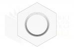 ISO 8765_Śruba z łbem sześciokątnym - 10.9 - RightView