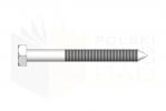 DIN 571_Wkręt z łebm sześciokątnym - TopView